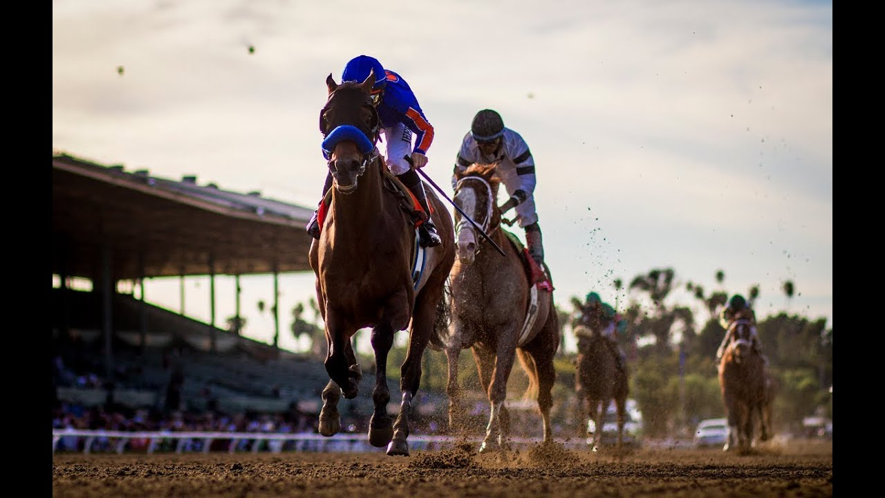 2014 Santa Anita Handicap Youtube