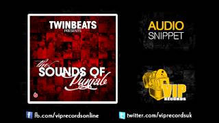 Twin Beats ft Rani Randeep Nanke V Dhadke **Audio Snipett**