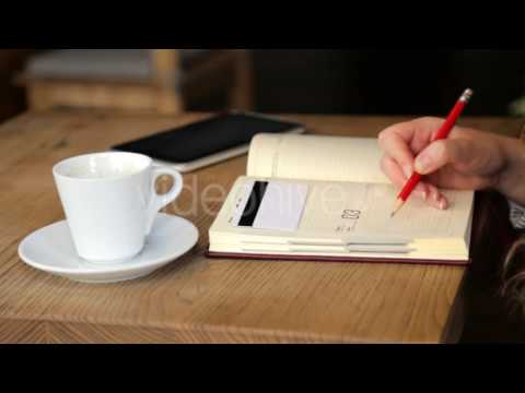 At Lunch Business Woman Doing a Financial Analysis - Stock Footage | VideoHive 15376913