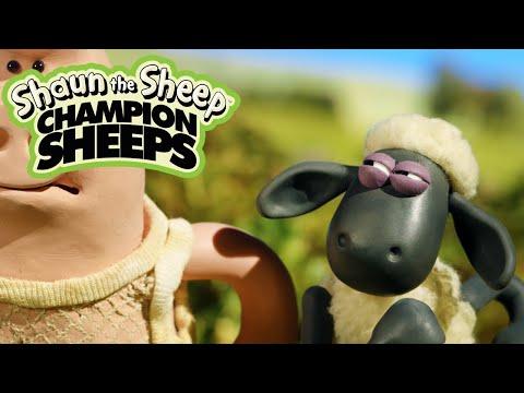 Championsheeps - 100 Metre Dash [Shaun The Sheep]