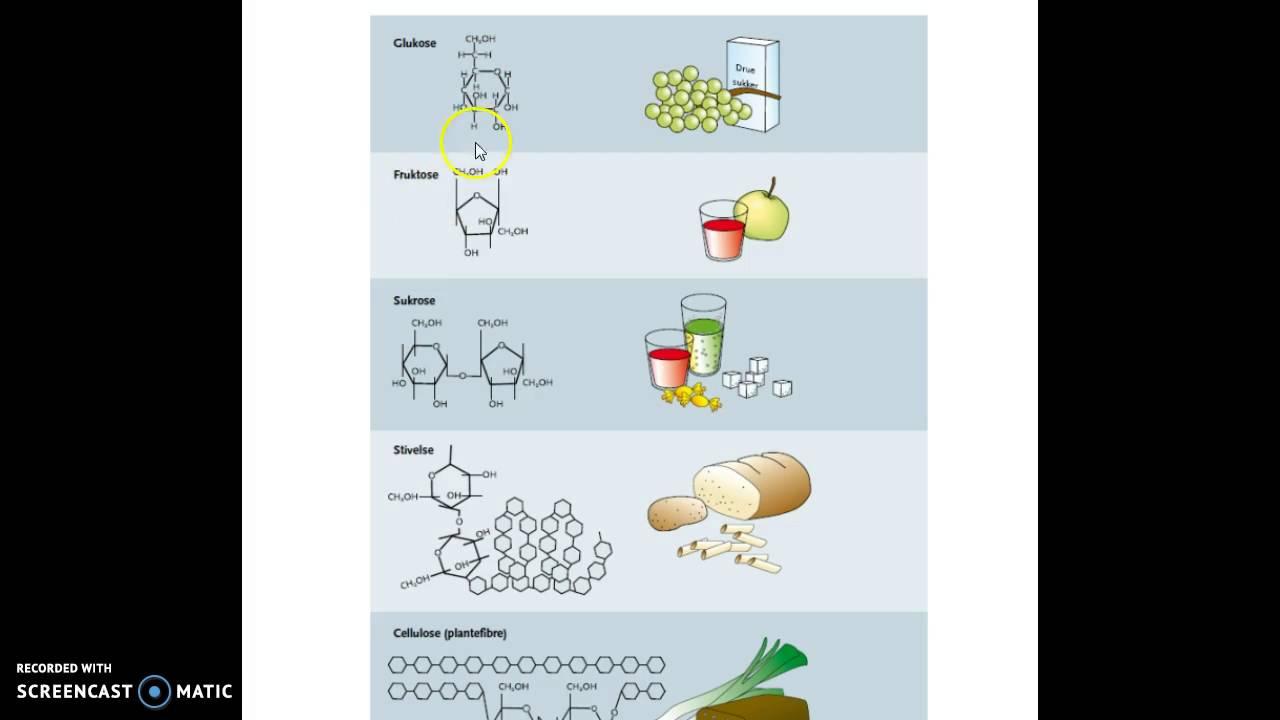 kulhydrater proteiner og fedt
