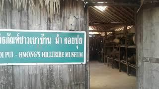 チェンマイ・ドイプイ山のモン族トライバルビレッジ Hmong Tribal Village in Mount Doi Pui, Chiang Mai