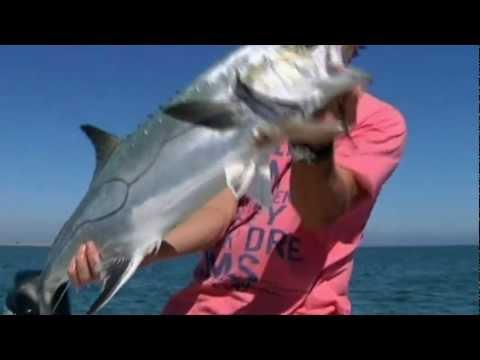 Pêche du thon et liches aux leurres avec Cyril...
