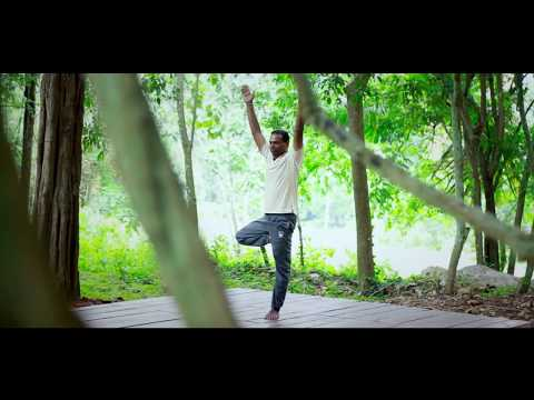 Ella Jungle Resort Trailer