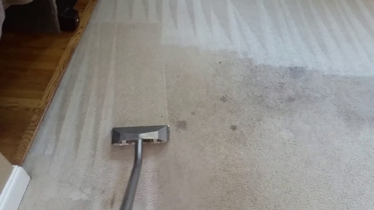 How To Clean Badly Stained Carpet Mycoffeepot Org