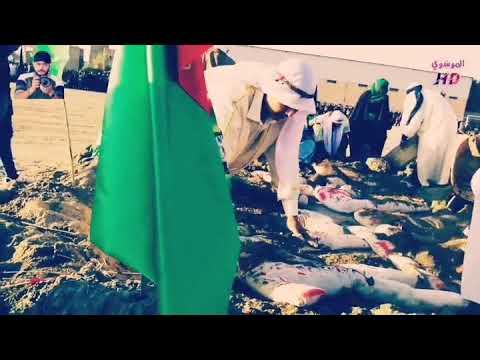 ستوري نوحو على الحسين سيد فاقد دفن الأجساد الطاهرة في قضاء الدغارة