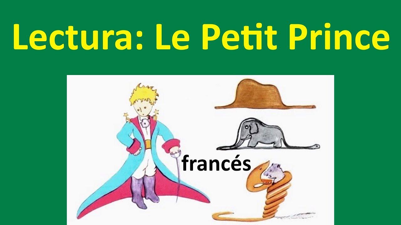 Le Petit Prince Lectura En Francés Del Principito