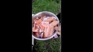 Уха на костре из красной рыбы