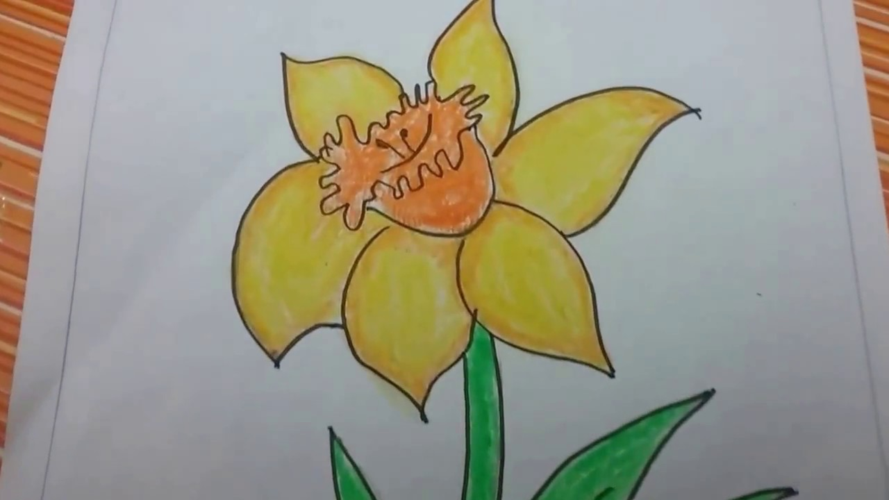 How To Draw A Daffodil Flower With Basic Shapes East Drawing Of Beautiful Daffodil For Kids Youtube In 2020 Flower Drawing For Kids Flower Drawing Drawings