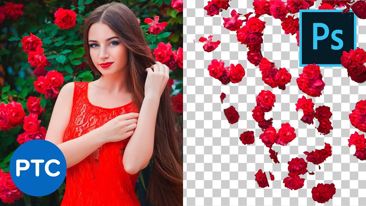 Better Cut Outs with This Color Range Photoshop Trick – 90-Second Tip #11