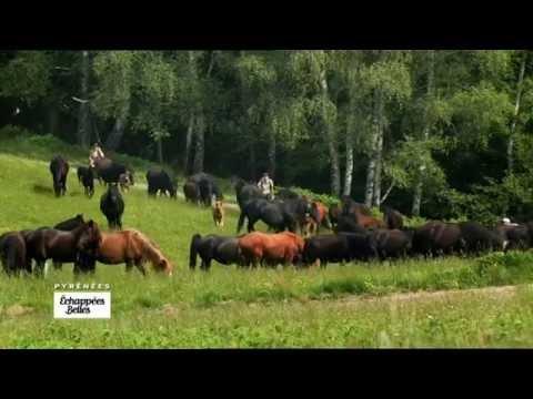 Pyrénées, un don du ciel - Echappées belles