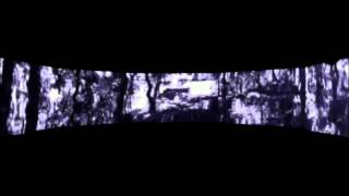 Deep Forest, audio-visual art by Apostolos Loufopoulos (The Fog, Part 1)