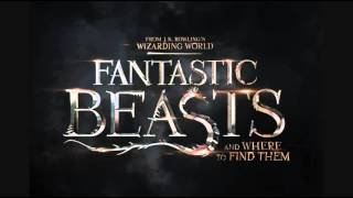 Fantastic Beasts and Where to Find Them (Hedwig