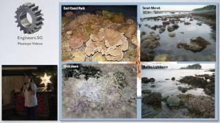 You, Me and the Reefs - Tech Tarik Ocean Exploration
