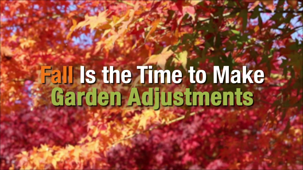 Fall is Time to Make Garden Adjustments