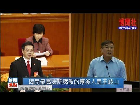 夏业良:崔永元揭开最高法院黑幕的保护伞是王岐山