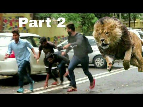 (Must watch) | Lion Prank | SHER AAYA PRANK GONE RIGHT | Pranks in India 2018 | Hsj