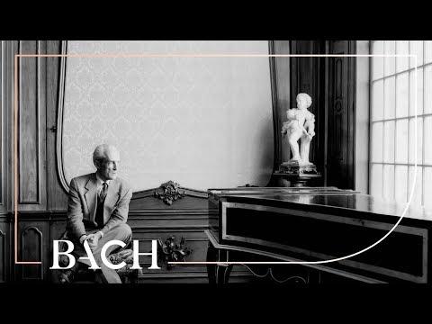 Hantaï on Gustav Leonhardt   Netherlands Bach Society