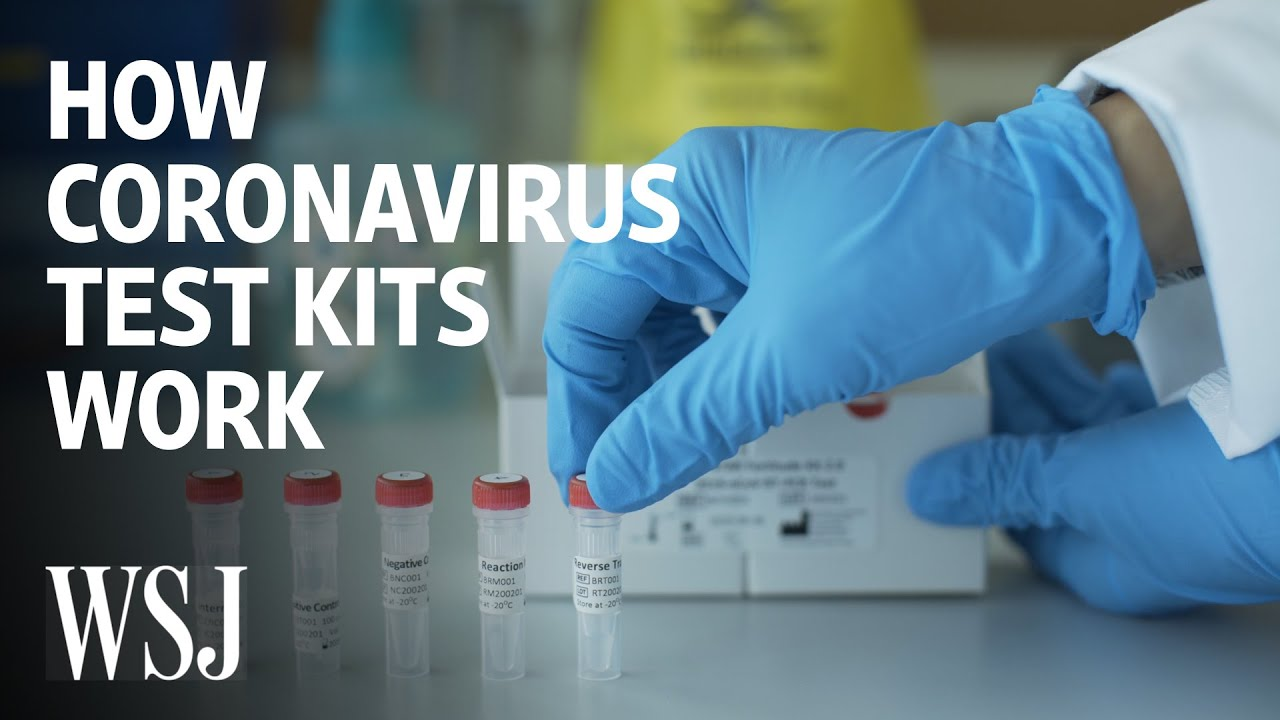 How Coronavirus Test Kits Work | WSJ