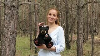 Американский чёрный медведь с сиалией