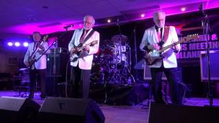 Jumping Jewels Revival Band - Wild Geese
