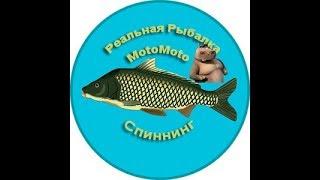 спиннинг  Реальная Рыбалка