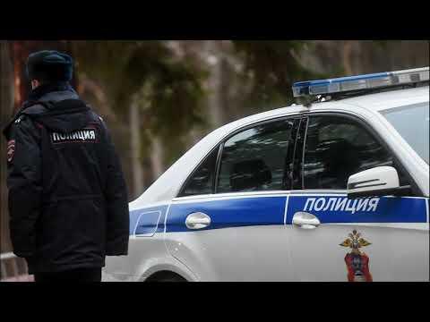 На Урале нашли двух 11-летних мальчиков, которые выжили благодаря собакам