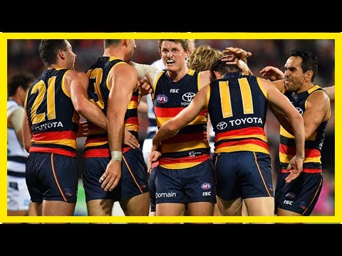 Breaking News | Adelaide Crows Vs Gold Coast Suns: AFL Live Scores, Blog