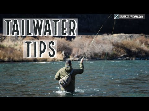 Tips For Tailwater Fly Fishing With Tom Larimer