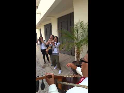 Rey's Bachelorette mariachi welcoming