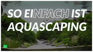 AQUARIUM EINRICHTEN STEP BY STEP | Aquascaping | GarnelenTv