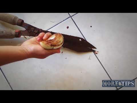 Cebolla para quitar el oxido (Remove rust with an onion)