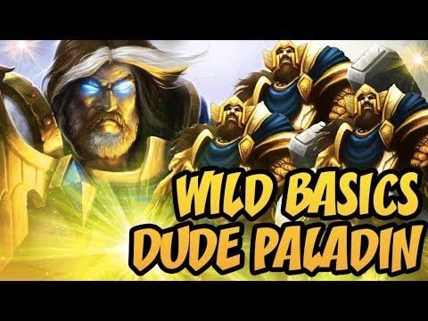 Hearthstone Wild Basics: Dude Paladin