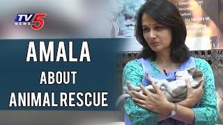 Amala about Animal Rescue & Blue Cross Animal Shelter | Amala Interview | TV5 News