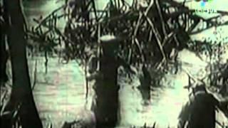 Cuba La Isla Rebelde 2007 SATRip XviD MP3 CLAN SUD