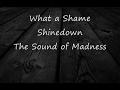 What a Shame-Shinedown-Lyrics-HD
