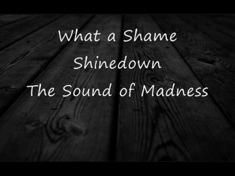 What a Shame-Shinedown-Lyrics-HD