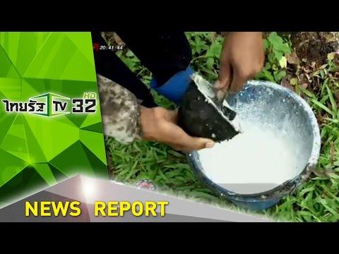 นครศรีฯ เลี้ยงไก่แก้วิกฤติราคายาง | 30-01-59 | ไทยรัฐนิวส์โชว์ | ThairathTV