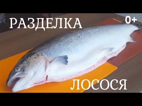 Разделка Рыбы | Лосося | На Филе и Уху 0+