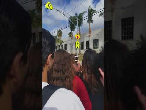Ventura High School Walk Out