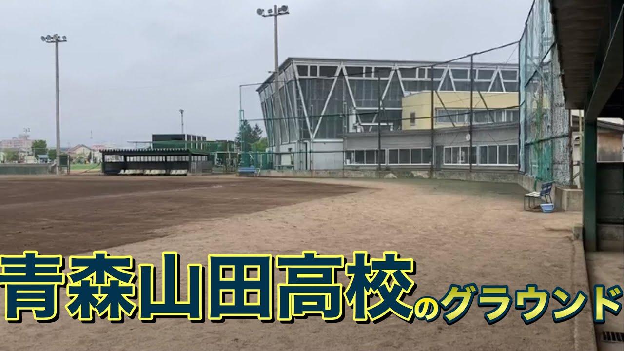 野球 山田 部 高校