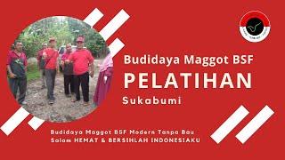 Pelatihan Budidaya Maggot BSF Modern Tanpa Bau Sukabumi Part 273
