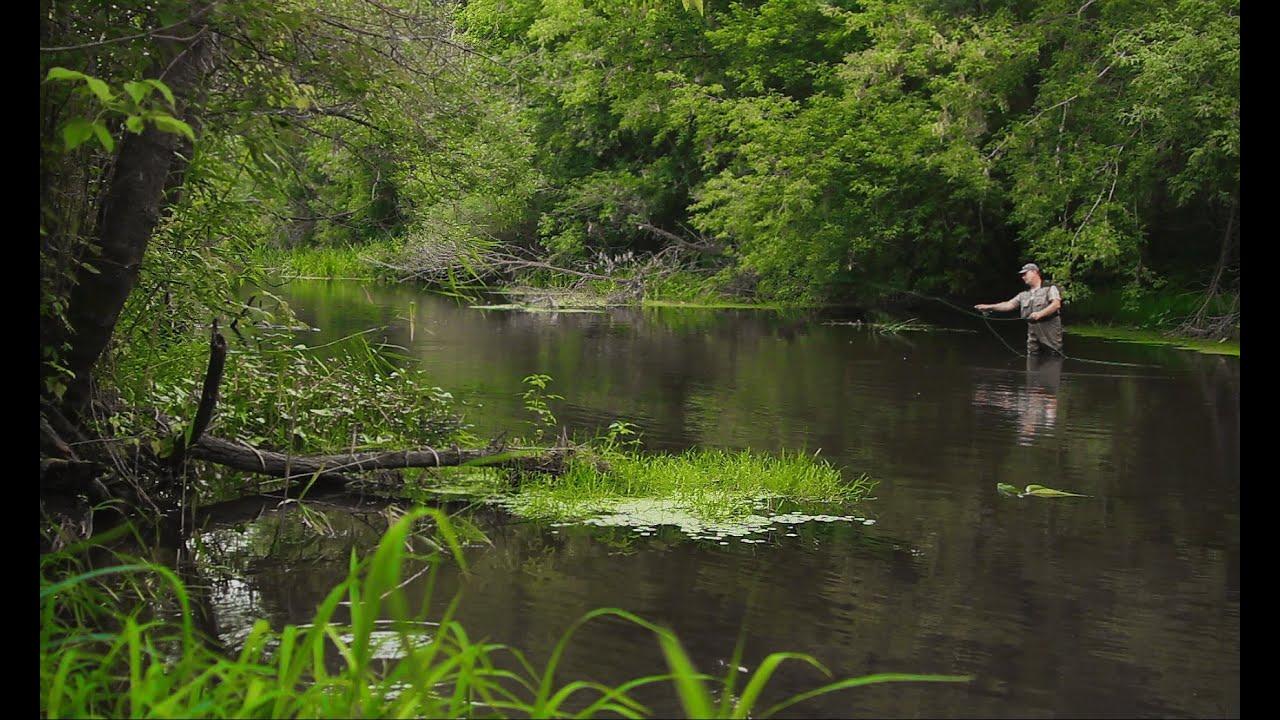 река воронеж весенняя рыбалка