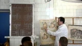 видео Абдоминальная хирургия