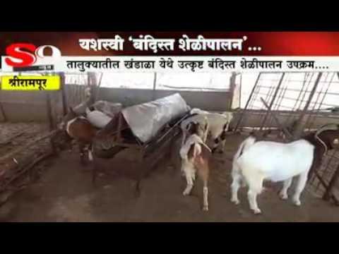 Boar Goat Farm Maharashtra