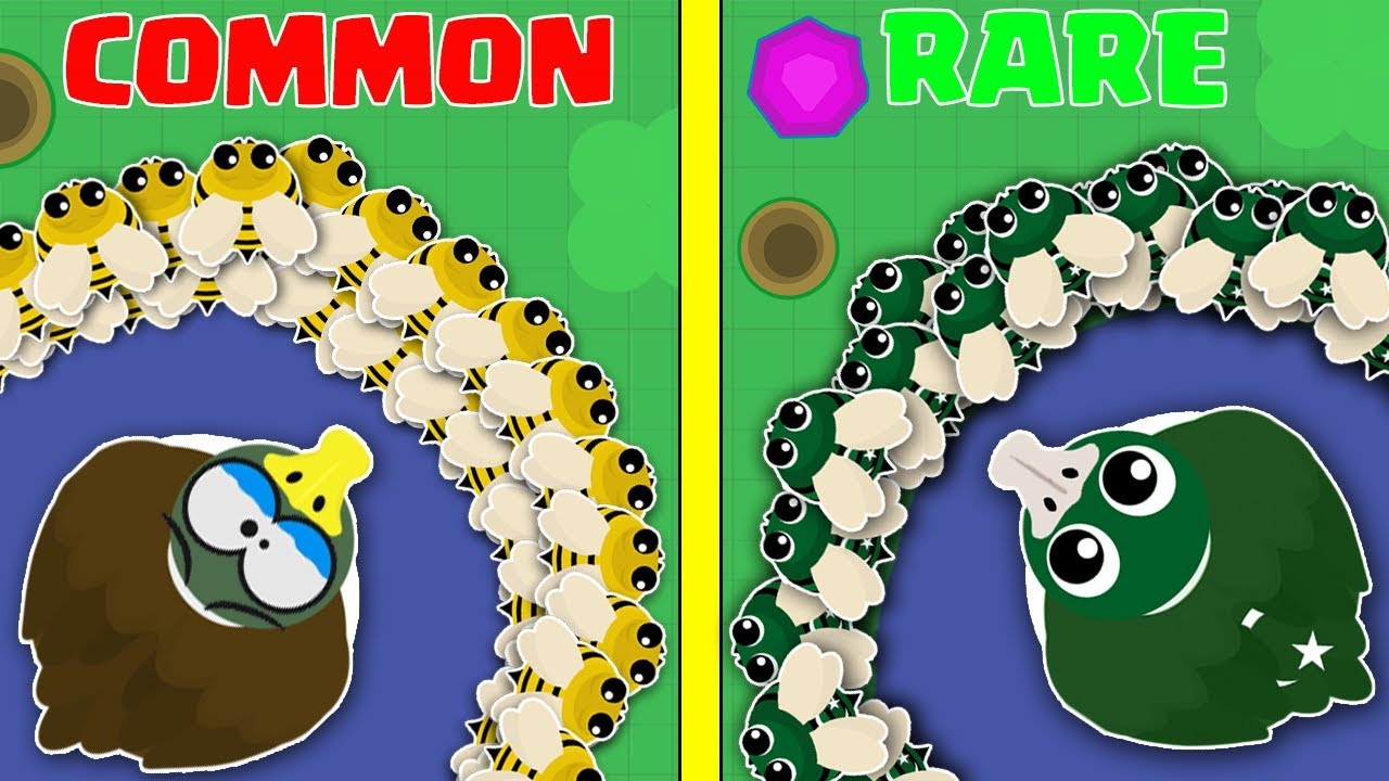 MOPE.IO / NEW RARE PAKISTAN BEES & DUCKS ANIMAL IDEA UPDATE! / NEW RARE ANIMALS GAMEPLAY & T