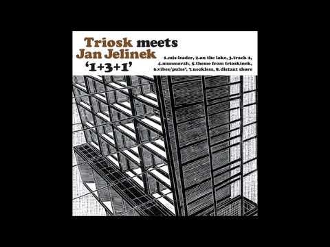 Triosk meets Jan Jelinek - 1+3+1 (2003, nu jazz, FULL ALBUM)