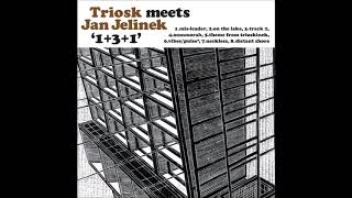 Triosk meets Jan Jelinek - 1+3+1 (2003, nu jazz, FULL ALBUM)
