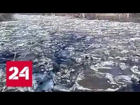 """""""Погода 24"""": Алтайский край уходит под воду - Россия 24"""