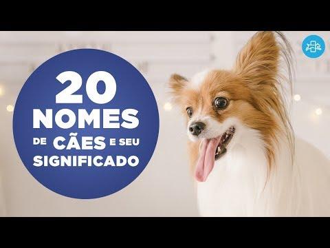 20 NOMES para